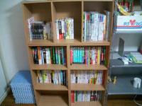 増えた本棚